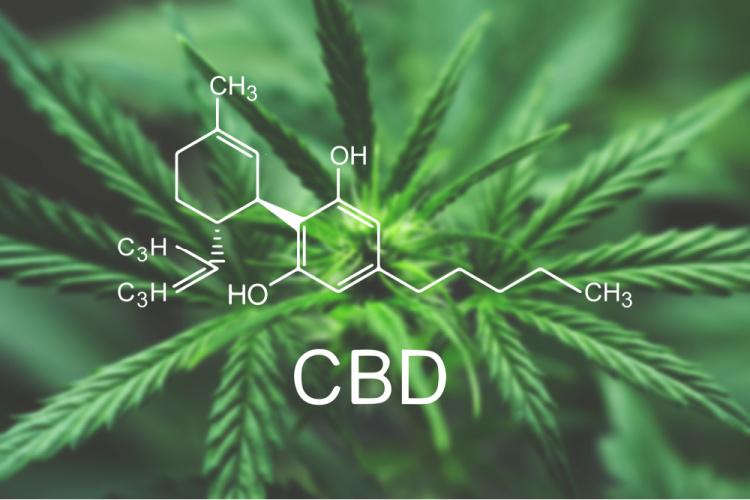 cannabinoids 3