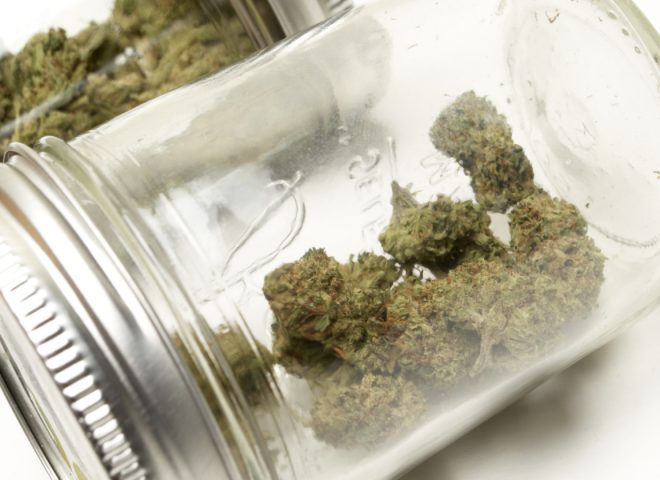 Storing Cannabis