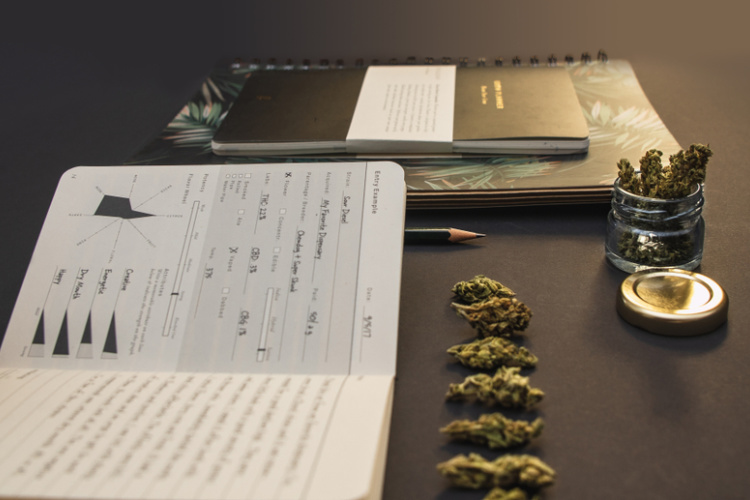 cannabis journal 1